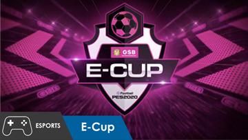 Plan B Media l E-Cup